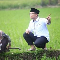 12 Proyek Nasional, Andika Tak Ingin Warga Banten Jadi Penonton