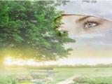 Gambaran Bidadari Surga dalam Alquran dan Hadis