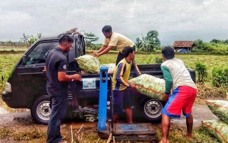 Selama Oktober 2018, Nilai Tukar Petani di Banten Alami Kenaikan