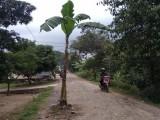 Pembangunan Ruas Jalan Pale-Sindangheula Telan Rp5 Miliar
