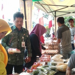Bantu Promosi, Distan Kabupaten Serang Gelar Pasar Tani