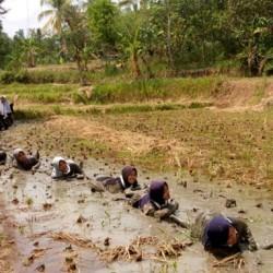 Sigab Persis Latih 76 Remaja dan Pemuda Siap Hadapi Bencana