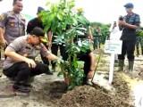 Polda Banten Tanam Ribuan Batang Pohon