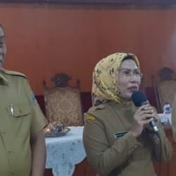 PDIP Usulkan Tatu-Pandji di Pilkada Kabupaten Serang 2020
