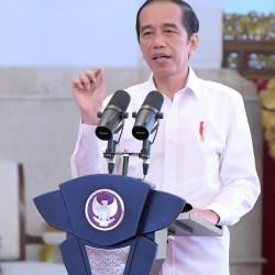 Jokowi Dorong Modernisasi Pertanian